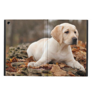 Yellow Labrador Puppy In Autumn Case For iPad Air